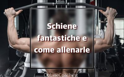 Schiena: quali muscoli e come allenarli.