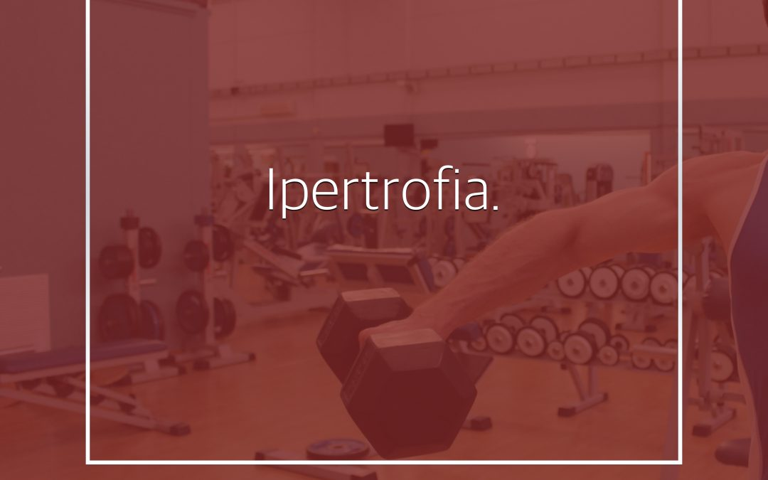 Ipertrofia muscolare: la ricerca eterna.
